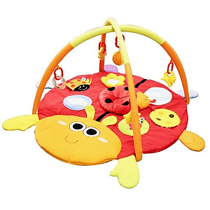 Simple Dimple Ladybird Activity Playgym